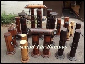bamboo-speakers.00_jpg_srb