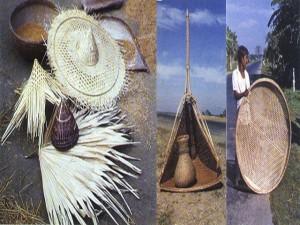 Bamboo-Assam