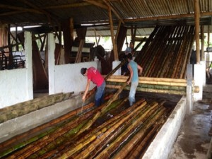 Bamboo Flooring-1