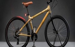 Bambusa-Urban-Brown-bicycle