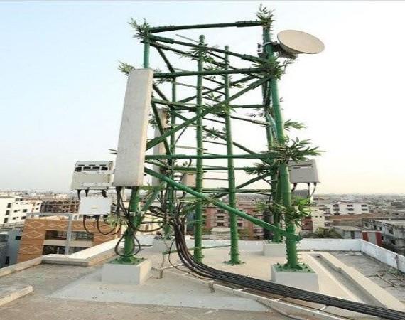 Bangaladesh Bamboo Cell tower