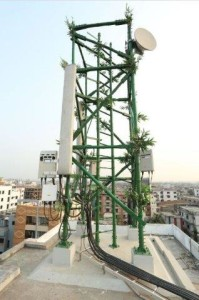 Bangaladesh Bamboo Cell tower - Copy