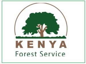 kenya forst service