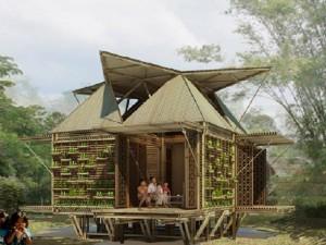 bamboo homes