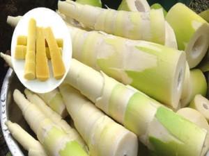 Bamboo-Shoot-Veduru-Chiguru-180813