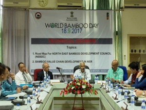 World BAmboo Day Technical Session Chaired By DoNER Secretary