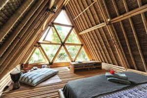 bamboo home3