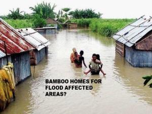 flood pic 1